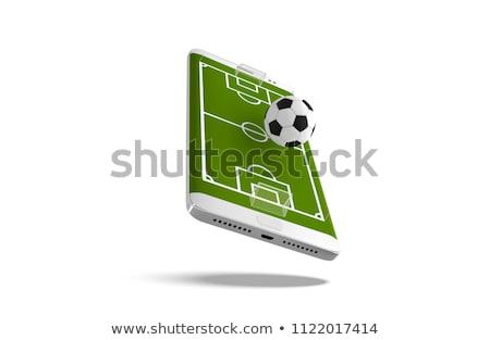 Sportok fogadás pici emberek üzletember futball Stock fotó © RAStudio