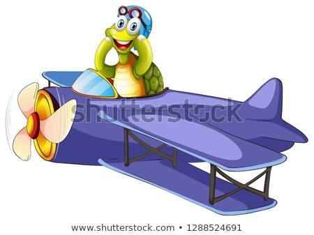 Tartaruga equitação vintage avião ilustração feliz Foto stock © colematt