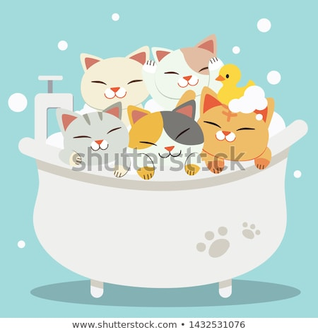 Cute cat in a bathtub and duck rubber Stock photo © amaomam