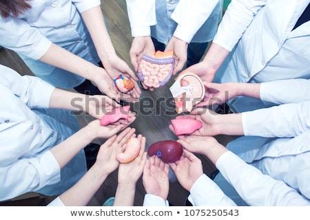 doador · cartão · ilustração · olhos · coração - foto stock © adrenalina
