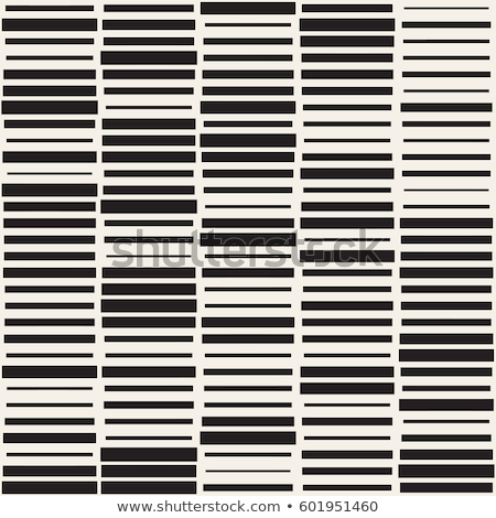 Vector Seamless Black And White Irregular Dash Rectangles Grid Pattern. Abstract Geometric Backgroun Stock photo © samolevsky