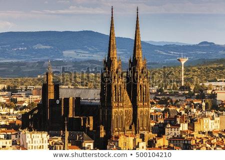 Kathedraal Frankrijk dame onderstelling gothic frans Stockfoto © borisb17