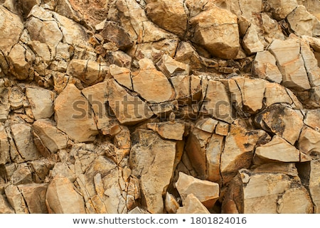 Kőfal durva száraz magas döntés absztrakt Stock fotó © oneo