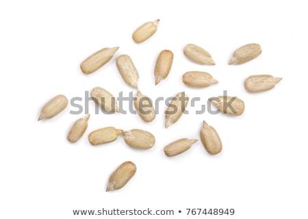 Сток-фото: подсолнечника · семян · питательный · древесины · чаши