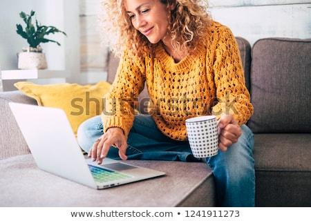 sarışın · kadın · ev · dizüstü · bilgisayar · mutfak · tablo - stok fotoğraf © photography33