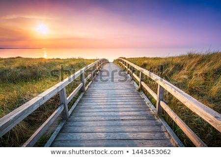 wooden pier along the coast stock photo © kawing921