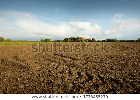 Veld bruin aarde donau rivieroever Stockfoto © simply