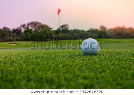 Golf ball on a putting green with the flag in background Stock photo © tish1