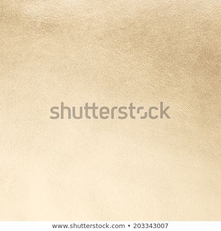 Golden color leather stock photo © homydesign