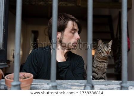 hapis · hücre · görmek · bloklar · hukuk · mahkeme - stok fotoğraf © drizzd