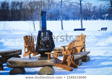 BBQ tél idő étel tűz hó Stock fotó © inxti
