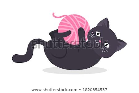 любопытный · оранжевый · котенка · большой · Лапы - Сток-фото © gabes1976