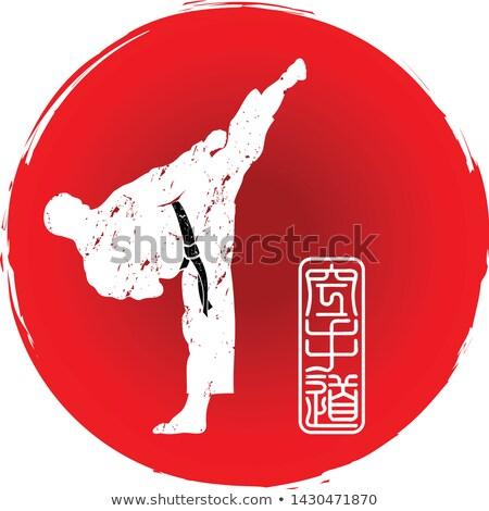 Homme arts martiaux lutteur posent blanche Photo stock © wavebreak_media