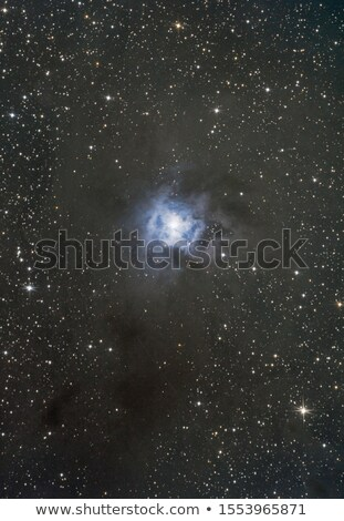 NGC7023 Iris Nebula stock photo © rwittich