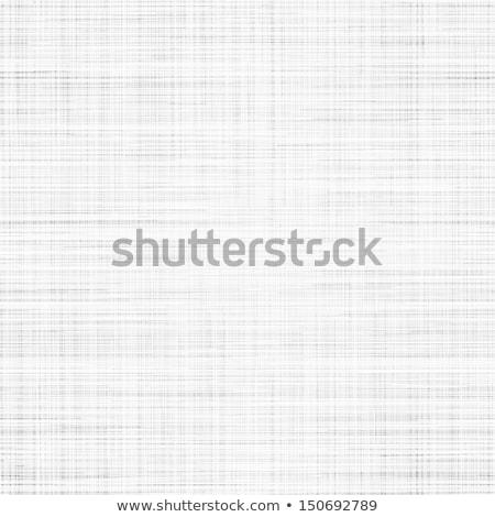 branco · abstrato · grade · padrão · têxtil - foto stock © tashatuvango