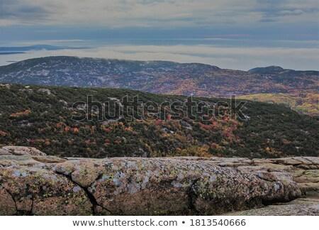 горные растительность мнение Top пустыне острове Сток-фото © ca2hill