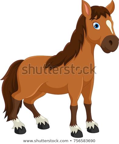 cavalo · desenho · animado · ilustração · casa · natureza · gato - foto stock © adrenalina