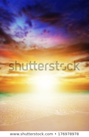 Amazing sunset on the beach, very shallow depth of field Stock photo © moses
