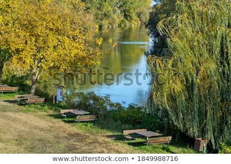 Río otono colores distancia agua Foto stock © shihina