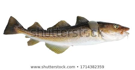 尾 · 魚 · 孤立した · 白 · 食品 · オレンジ - ストックフォト © inxti