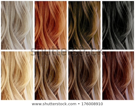 long female hair as color samples stock photo © stevanovicigor
