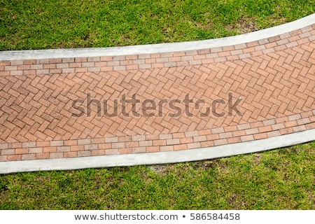 Brick-paved path stock photo © Ximinez
