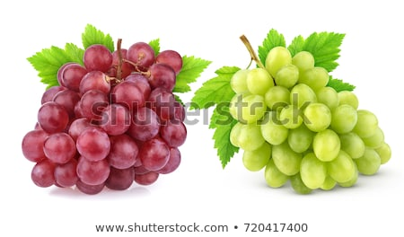Piros zöld szőlő gyümölcs szín fehér szőlő Stock fotó © wjarek