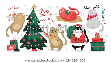 Funny gato saludo Navidad tarjeta de felicitación juguetón Foto stock © marimorena