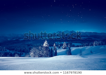 Winter landscape at night Stock photo © Kotenko
