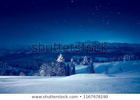 inverno · paisagem · noite · luz · lua · cheia · neve - foto stock © Kotenko