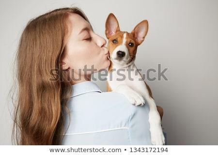 Сток-фото: щенков · изолированный · белый · вид · сбоку · Постоянный · собака
