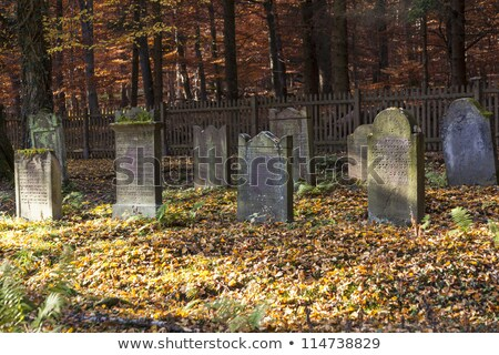 edad · cementerio · Praga · República · Checa - foto stock © meinzahn