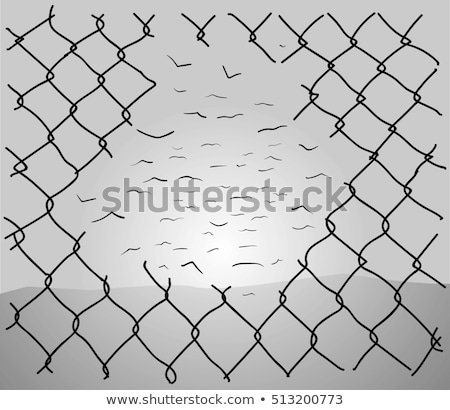 fence with barbed wire and birds Stock photo © tracer