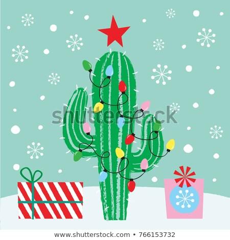 Christmas cactus foto mooie bloem bloemen Stockfoto © Nneirda