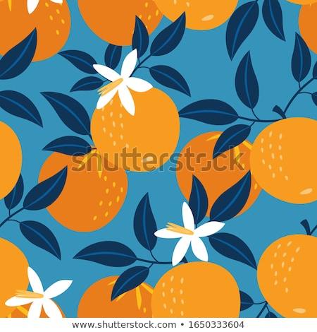 résumé · vecteur · fruits · orange · design · fruits · santé - photo stock © natali_brill
