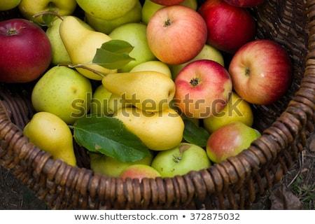 rijp · peren · houten · kom · oude · gezonde · voeding - stockfoto © digifoodstock