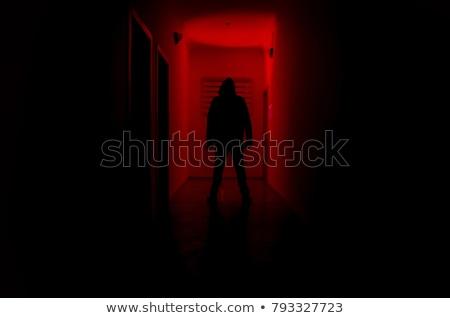 Lány pózol sötét szoba hinta tart Stock fotó © tekso