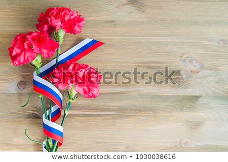 red carnation flower and ribbon tricolor russian flag stock photo © orensila