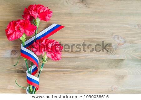 Czerwony goździk kwiat wstążka tricolor rosyjski Zdjęcia stock © orensila