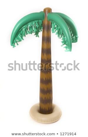 child on inflatable palm Stock photo © adrenalina