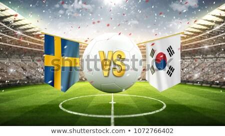Futebol combinar Suécia vs Coréia do Sul futebol Foto stock © Zerbor