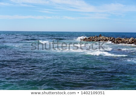 ocean meets the tropics stock photo © wildnerdpix