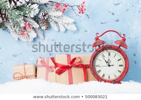 Сток-фото: Рождества · будильник · филиала · покрытый