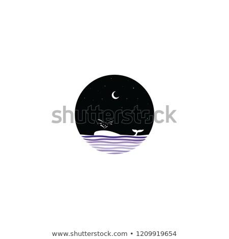 mezzanotte · scena · balena · segno · simbolo · vettore - foto d'archivio © vector1st
