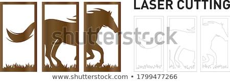 Drie frames wilde dieren illustratie natuur achtergrond Stockfoto © colematt