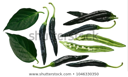 Pasilla Bajio chilaca peppers, leaves, paths Stock photo © maxsol7