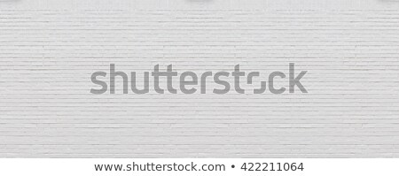 fresh brickwork wall background Stock photo © romvo