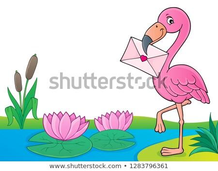 flamingo · ilustração · rosado · vermelho · pé · rosa - foto stock © clairev
