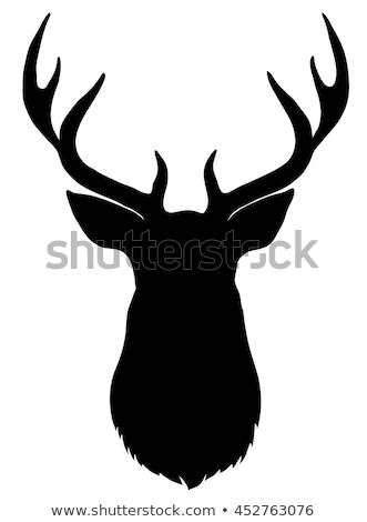 Szarvas fej sziluett vadállat rénszarvas profil Stock fotó © Terriana