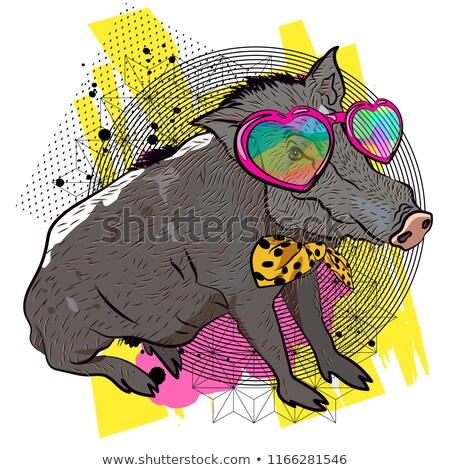 Graffiti cute wild mannetjesvarken illustratie kinderen Stockfoto © Blue_daemon